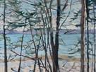 Hoag Seaside Woods 24x24 acrylic on canvas.jpg