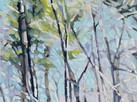 Hoag Spring Walk 16x16 acrylic on canvas.jpg