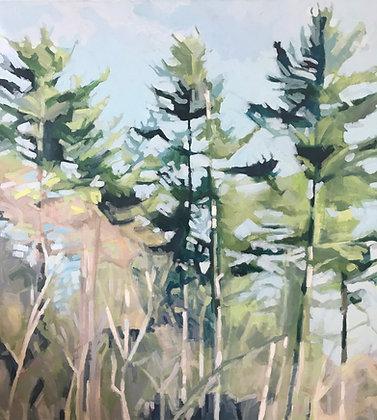 Bluff Trees