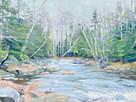 Central Maine Stream