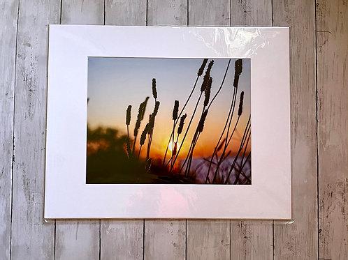 Sunset at VFW | 11x14