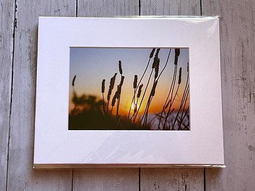 Sunset at VFW | 5x7