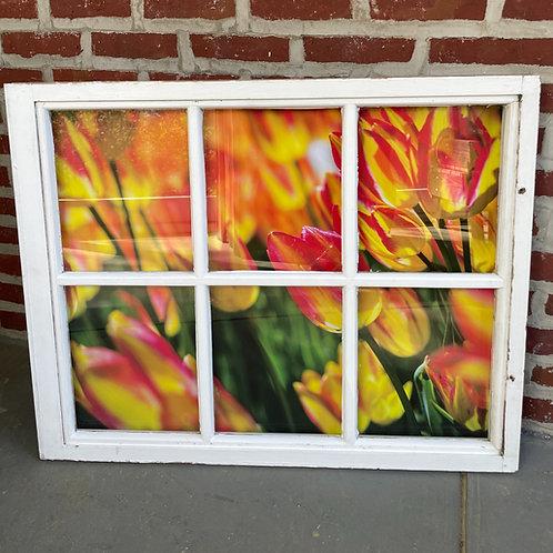 """33.00"""" x 27.00"""" Window Art"""