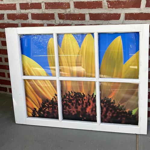 """34.00"""" x 27.00"""" Window Art"""