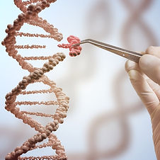 WHAT IS THE REVOLUTIONARY CRISPR TECHNOLOGY?