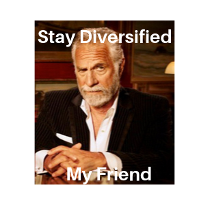 Stay Diversified My Friend -Article #5