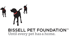 featured-image-bissell-pet-foundation_11