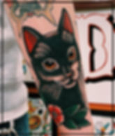 Ryan-Cat-Img.jpg