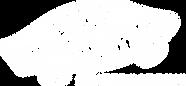 Vans_Skateboarding_Logo_White.png