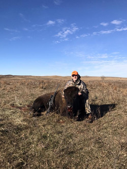 Buffalo Hunts