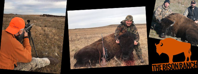 Single Post | The Bison Ranch | North Dakota Bison Hunts