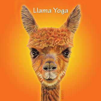 LlamaYoga_Icon_512x512.jpg