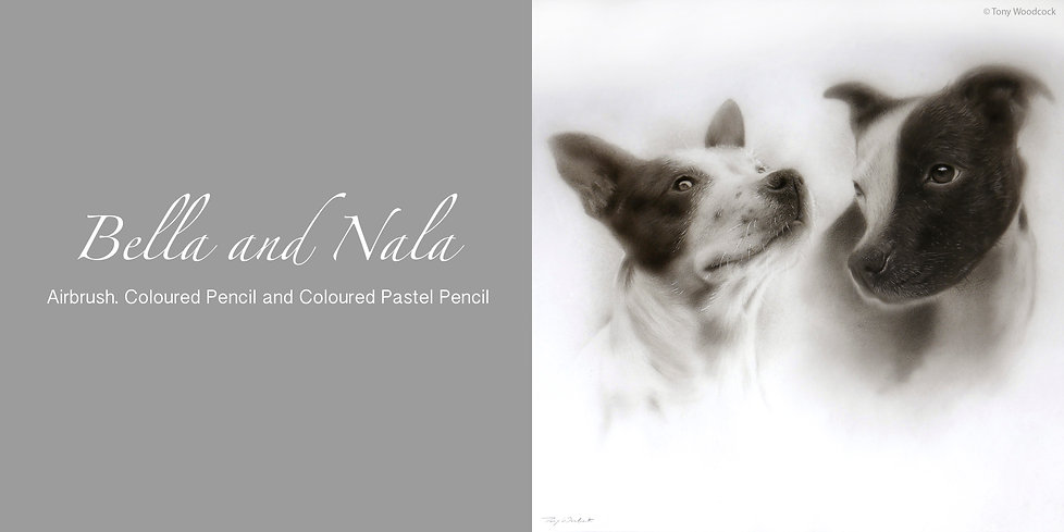 Bella & Nala Picture.jpg