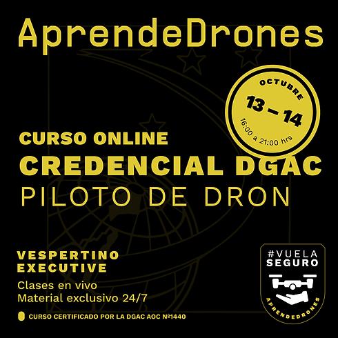 Obtención credencial DGAC ONLINE 13 y 14 de Octubre Vespertino Executive