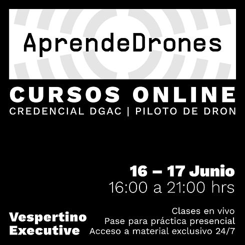 Obtención credencial DGAC ONLINE 16 y 17 de JUNIO Vespertino