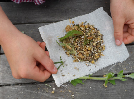 making tudor herbal poultices.JPG
