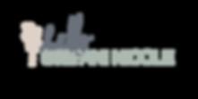 HSN Logo1.png