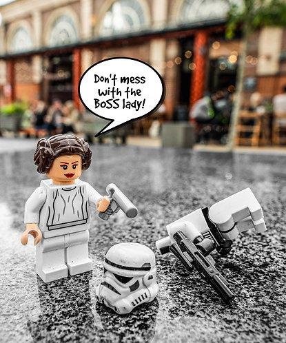 Princess Leia & Storm Trooper Star Wars - Altrincham (Lego Minifigures)