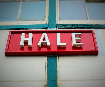Hale Train Station 1