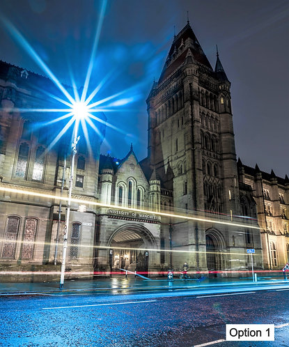 University of Manchester (6 options)