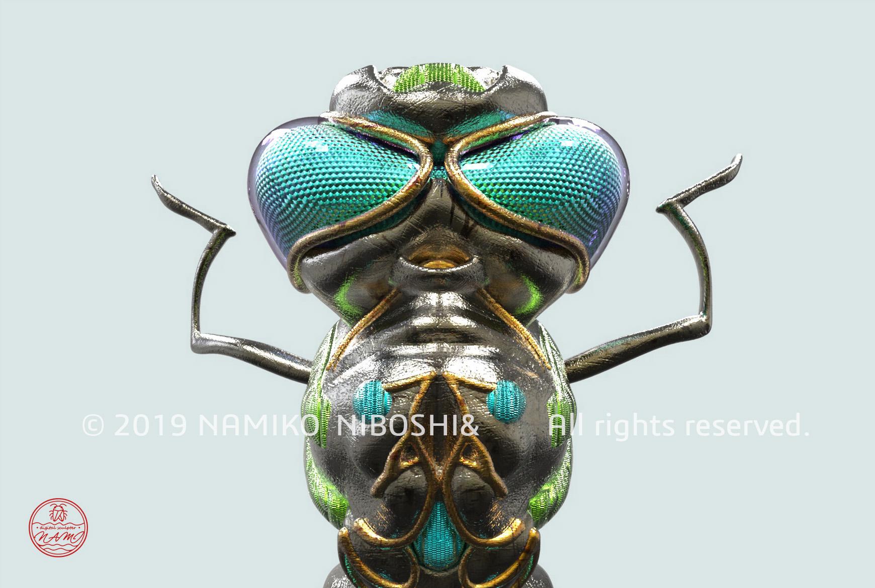 トンボの虫眼鏡