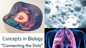 Connecting the Dots: Concepts in Biology