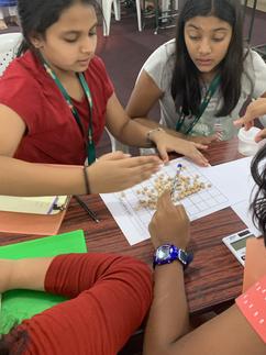 Estimation, # of chhole beans, students,