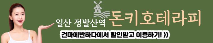일산 정발산역 돈키호테라피 배너