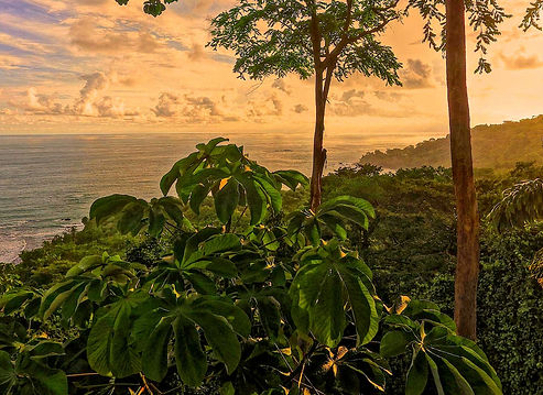 Sunset-costa-rica-ocean-view-ayahuasca-r
