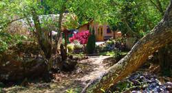 Ayahuasca retreat centers