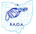 BAOA Logo - 2.PNG
