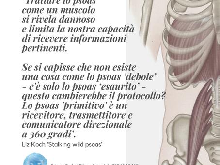 'Trattare lo psoas come un muscolo si rivela dannoso e limita la nostra capacità di ricevere...