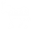 DTC DONKEY_(DIGITAL B&W COPY).png