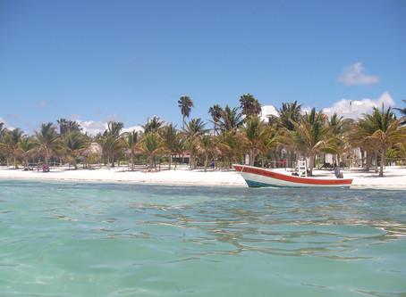 Akumal ว่ายน้ำกับเต่าทะเล @Mexico