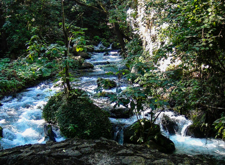 Barranca del Cupatitzio National Park แหล่งน้ำอันอุดมสมบูรณ์ @Mexico