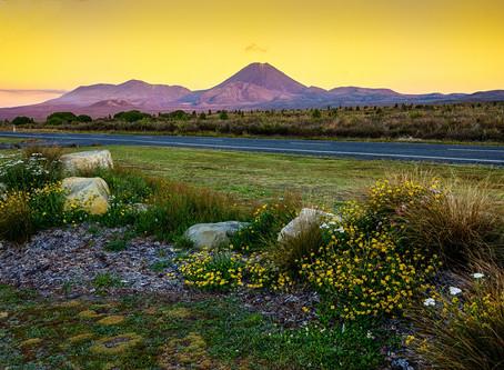 Tongariro National Park @New Zealand