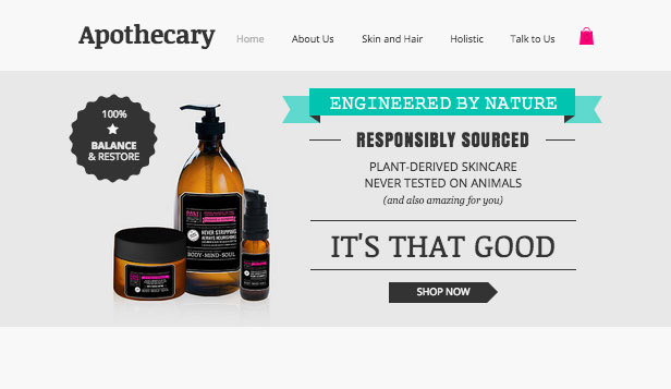 Online Store website templates –  The Apothecary