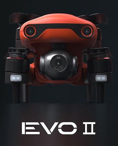 evo-2.jpg