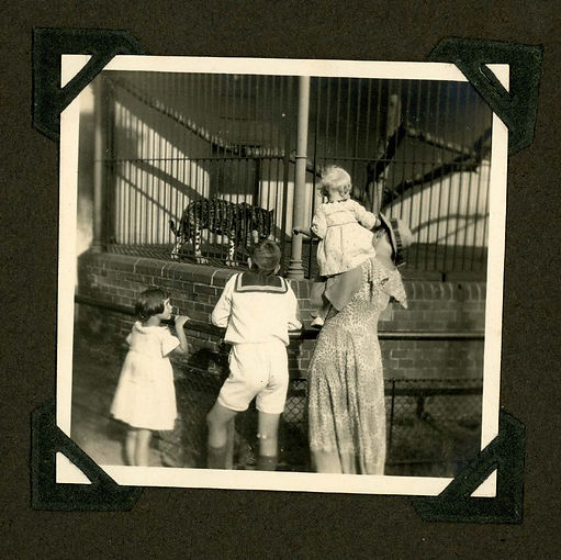 ivy album111.jpg