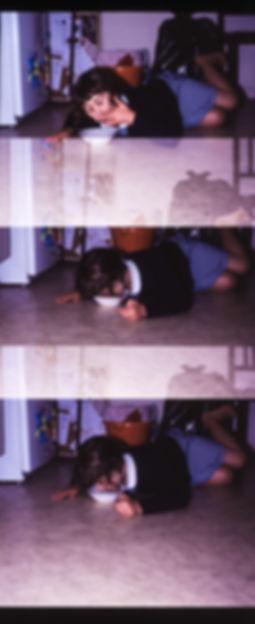 broken camera27.jpg