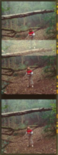 broken camera10.jpg