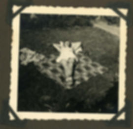 ivy album145.jpg