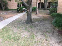 06 prayer garden 05