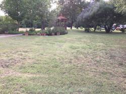 05 garden 01