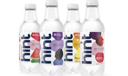 hint water logo