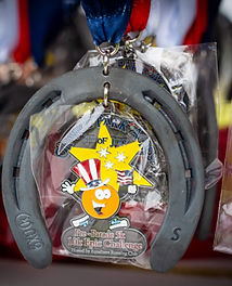 Division Medals