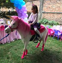 Fiesta de unicornio Bogotá