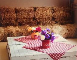 Fiesta de granja infantl