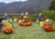 Fiestas infantiles con animales de granja