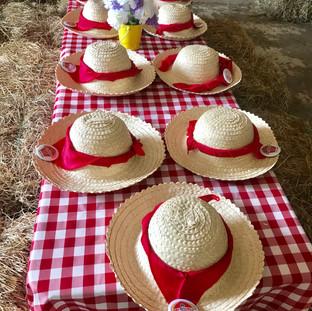 Fiesta de granja